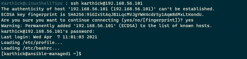 SSH From Host to Guest Machine