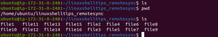 Confirm File Synchronization in Linux